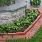 Como cuidar do relvado: aprenda dicas básicas para deixar o seu jardim magnífico (Parte II)
