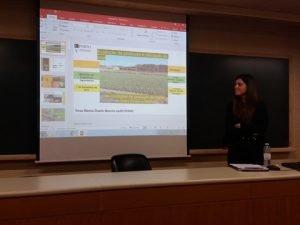 produção de soja em Portugal-divulgação dos resultados