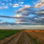 O que é a AgTech? Conheça o movimento que está a transformar a agricultura