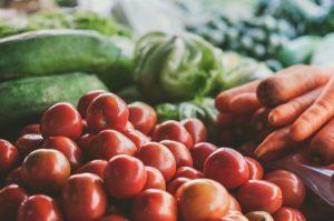 agricultura biológica pdf