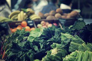 agricultura biológica em portugal