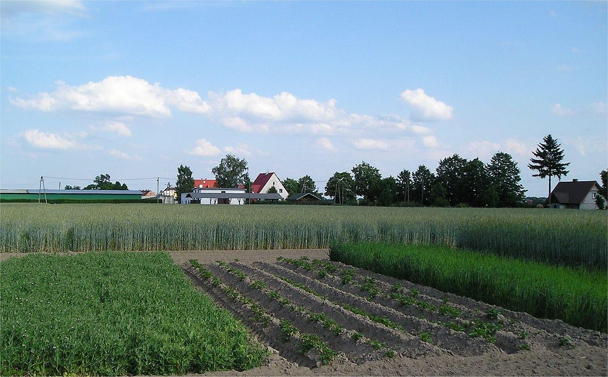 aumentar a produtividade agrícola