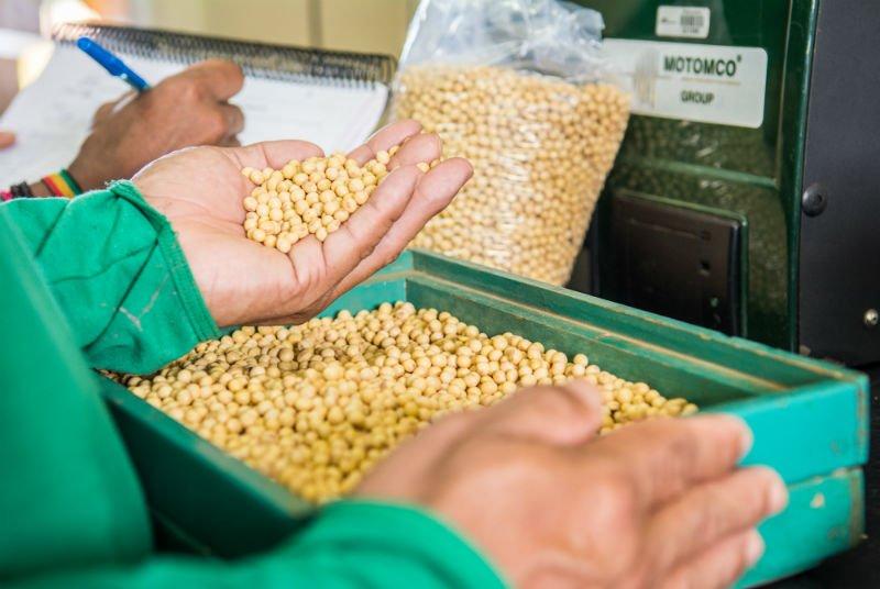 produtividade agrícola o que é