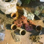 Aprenda a jardinar-Parte I