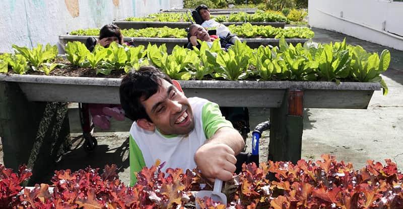 horticultura social e terapeutica