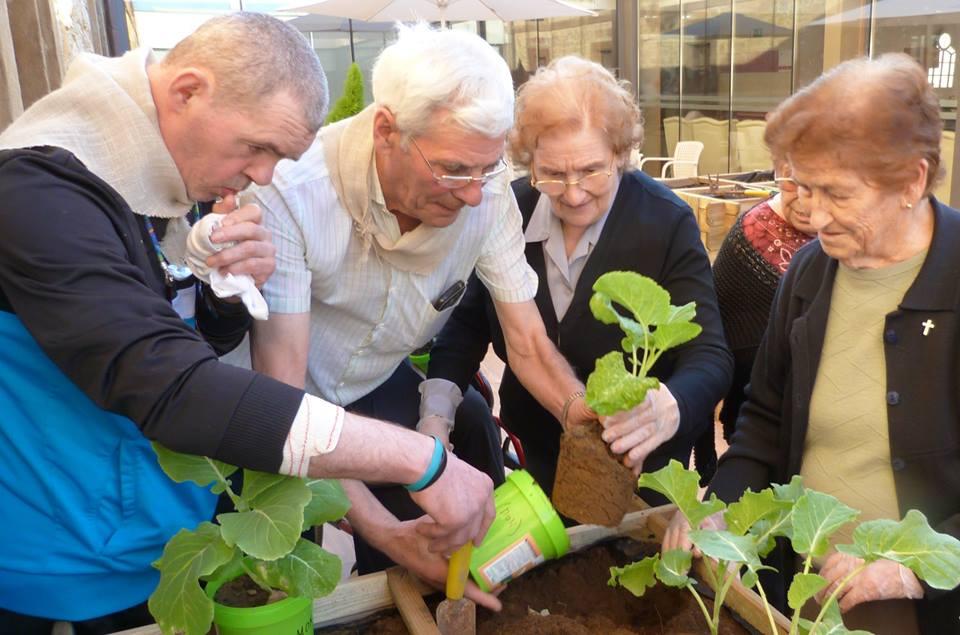 instituto de horticultura terapeutica