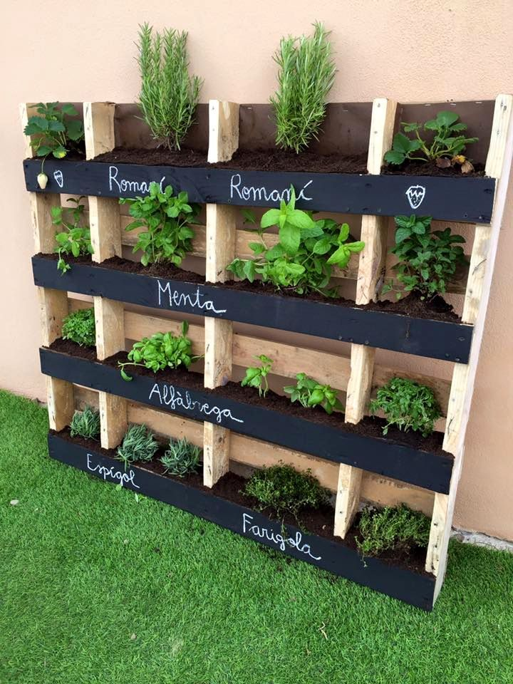 como fazer uma horta em varanda de apartamento