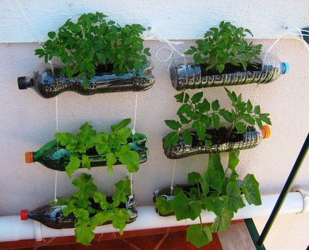 como fazer horta em apartamento com garrafa pet