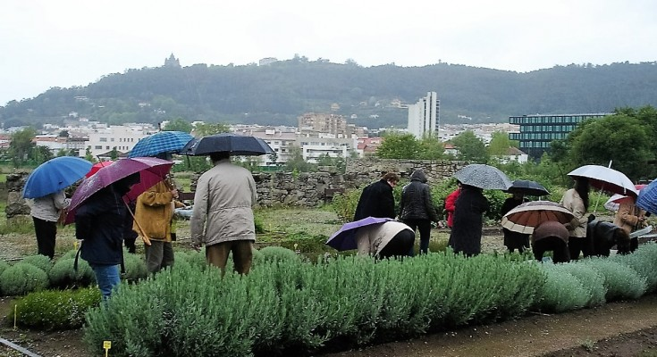 horticultura terapeuticapdf