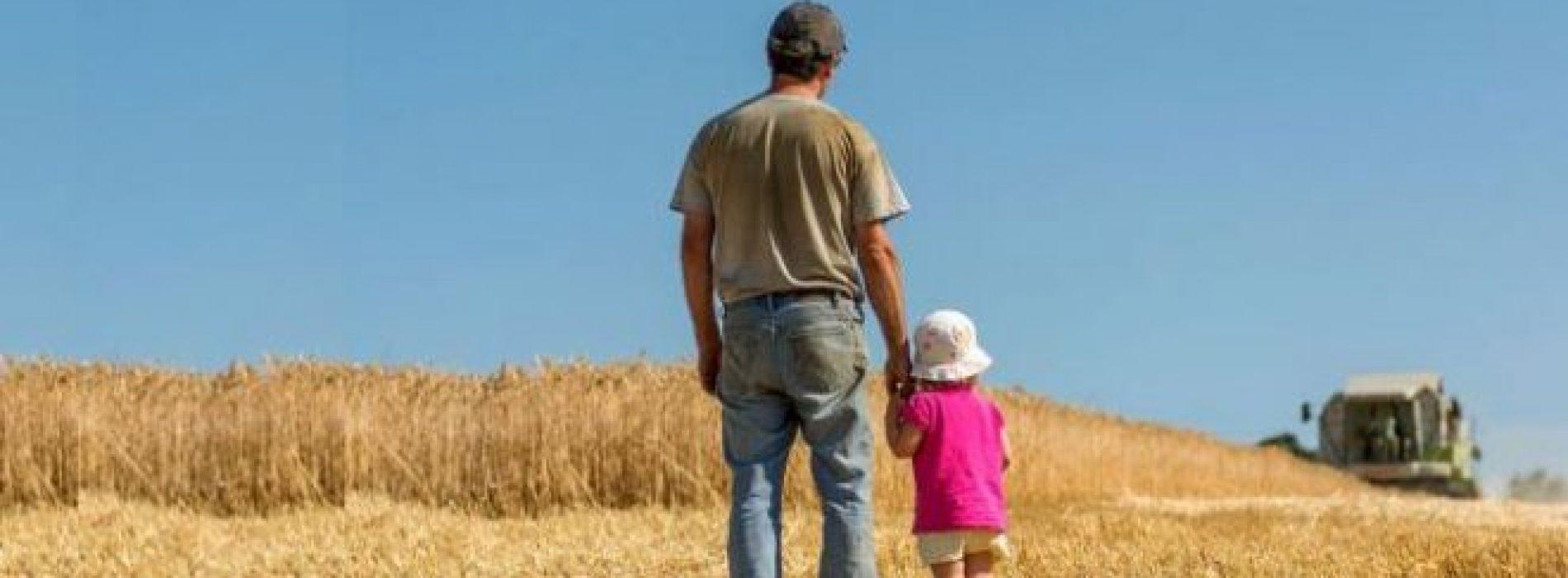 agricultura familiar artigo
