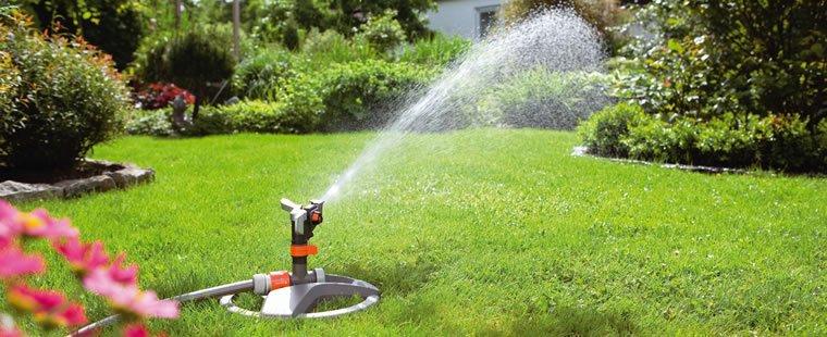 dicas para economizar água no seu jardim