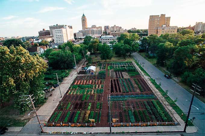 agricultura urbana conceito