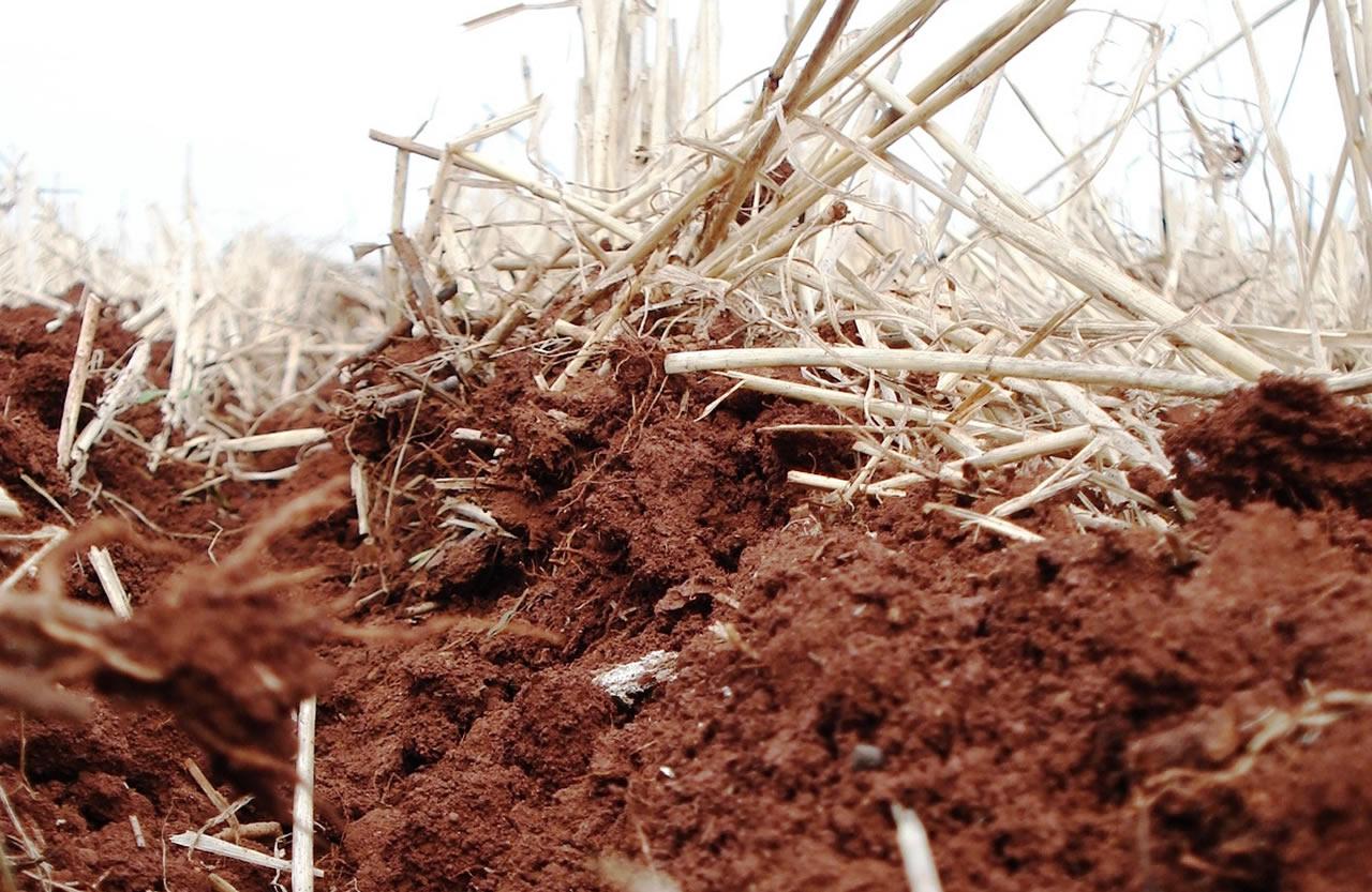 compactação do solo agricola artigos máquinas agrícolas