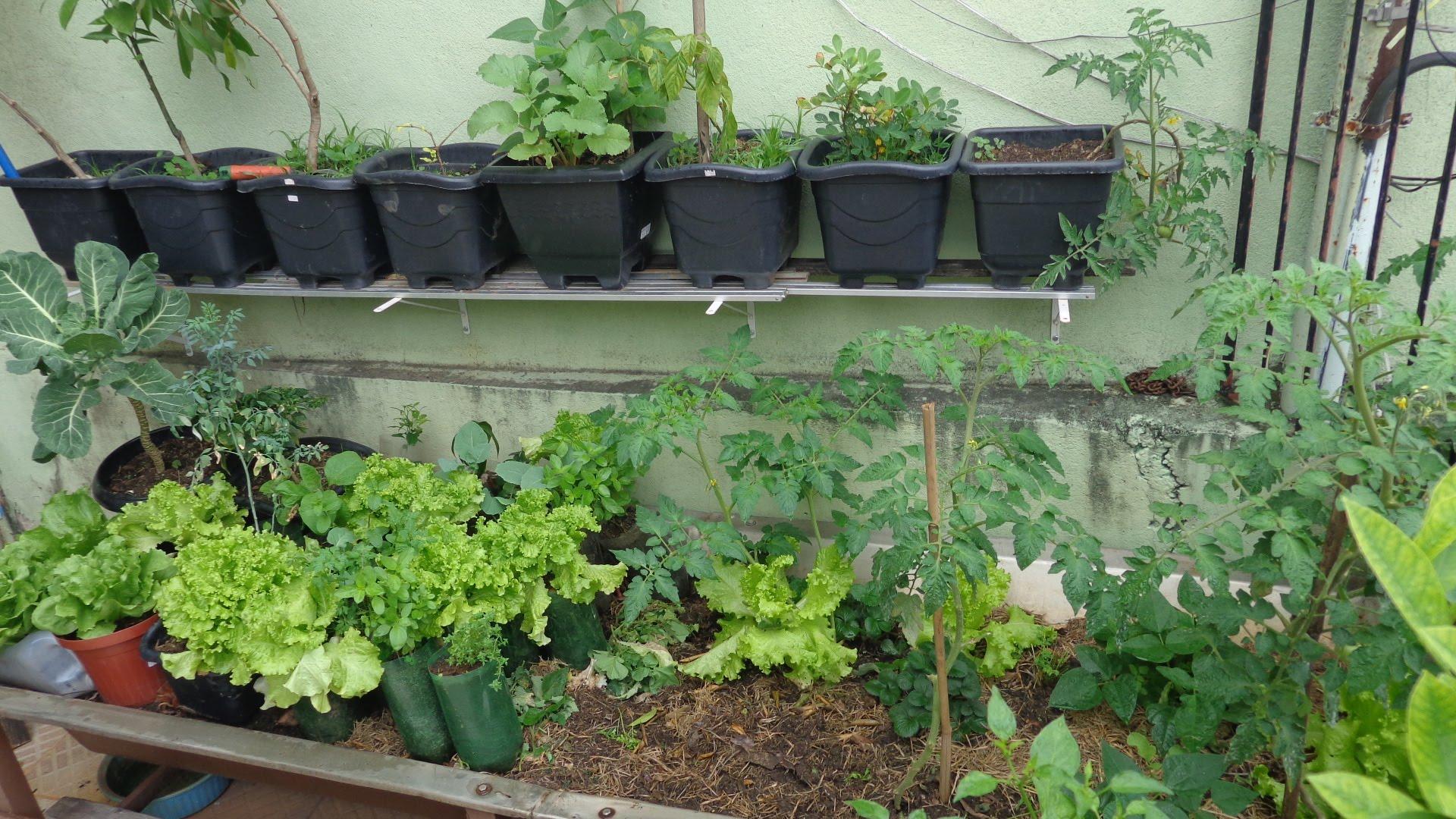 dicas de como fazer horta em apartamento