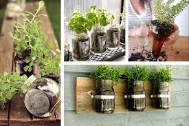 como fazer uma horta de temperos em apartamento