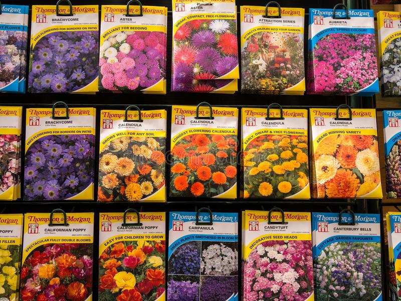 como semear relva no jardim