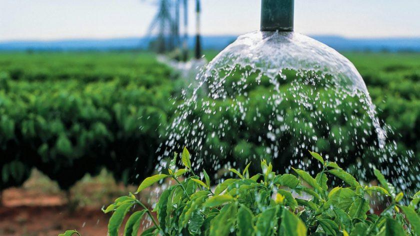 agricultura sustentavel pdf