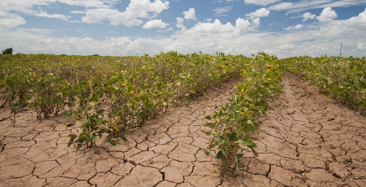 alterações climáticas agricultura desenvolvimento sustentável