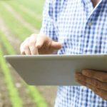5 razões para investir na  gestão agrícola da sua exploração