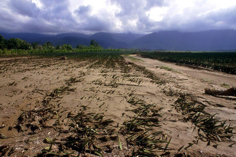 alterações climáticas e agricultura desenvolvimento sustentável