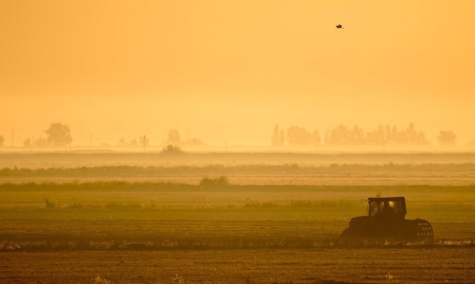 alterações climáticas na agricultura cap desenvolvimento sustentável