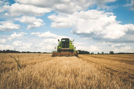 impactos das alterações climáticas na agricultura desenvolvimento sustentável