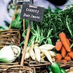 Sabe quais os fitofarmacêuticos que pode usar agricultura biológica? Veja aqui