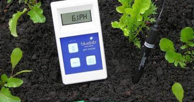 Tudo o que precisa saber para aprender a ajustar o pH do seu solo
