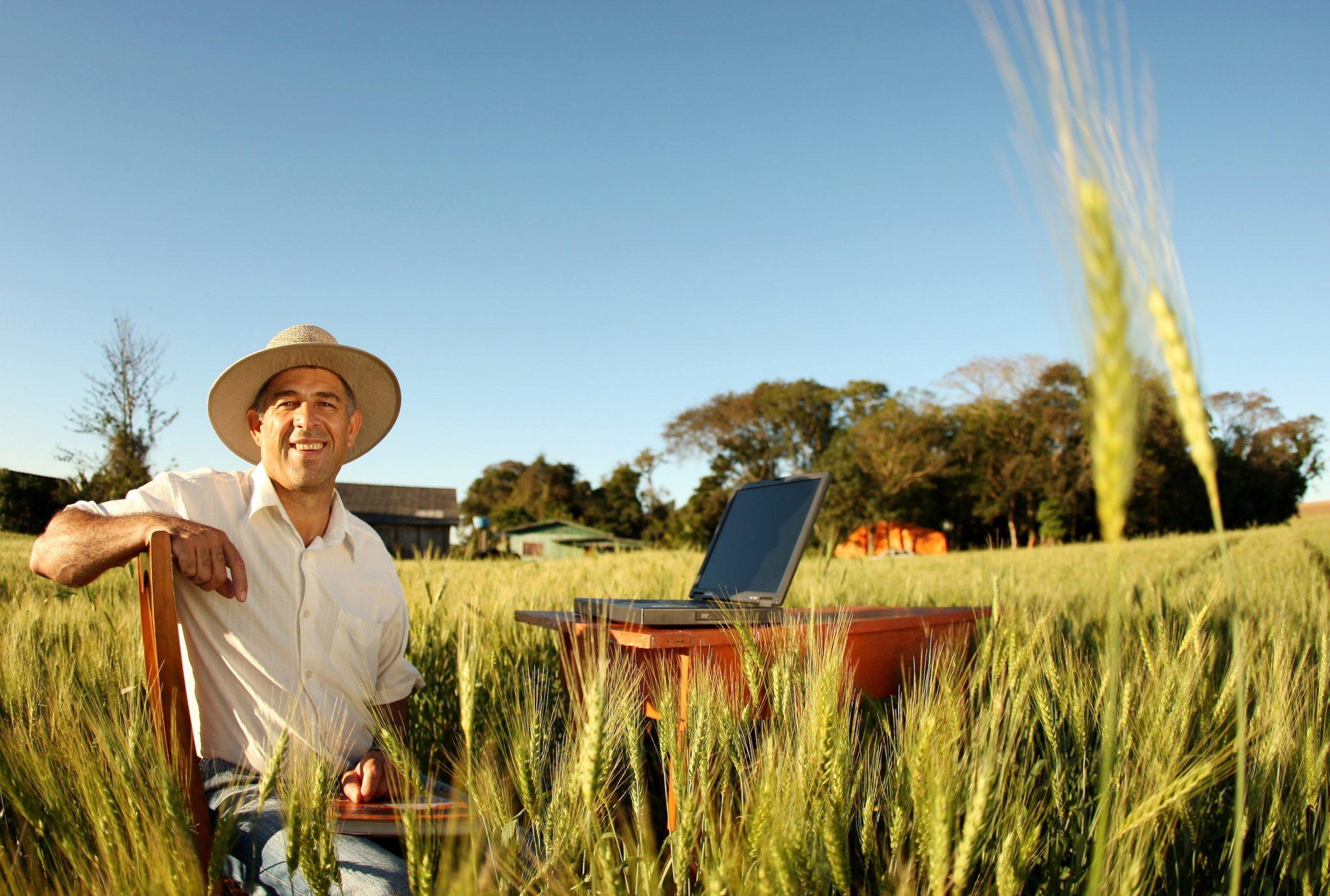 gestão agricola pdf
