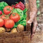 OFERTA DE EMPREGO: Técnico Comercial nas áreas do Ambiente, Agricultura e urbano em geral