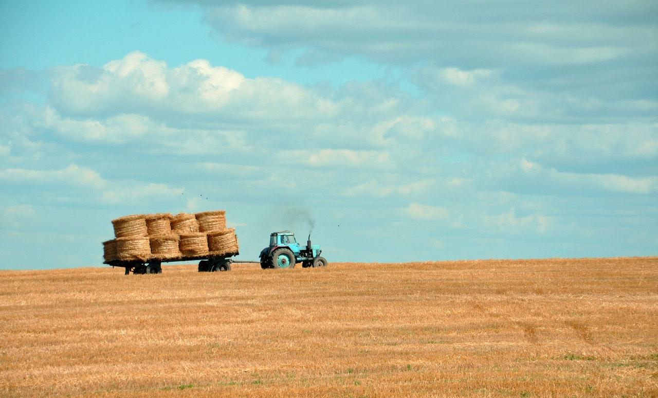 empresa agricola caracteristicas