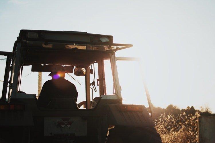 culturas agricolas mais lucrativas