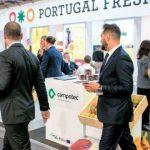 Produtores de frutas e legumes querem chegar aos €500 milhões em exportações para Espanha até 2019