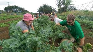 green care farms