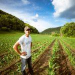 Portugal é dos países com maior acesso a financiamento para produtores agrícolas
