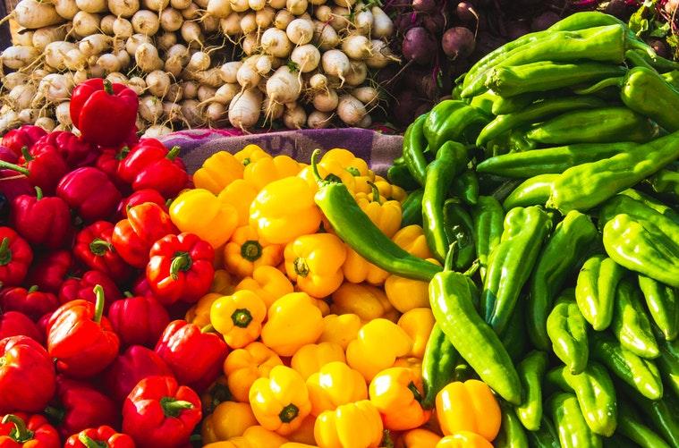 produtores agrícolas
