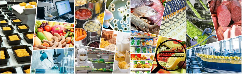 gastronomia molecular receitas