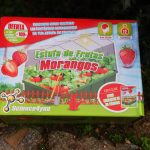 Unboxing Science4you: recebi uma estufa de frutas de morangos