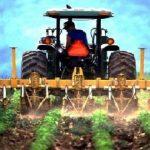 Agricultores dos Açores recebem 22 M€ de ajudas no último dia de 2018