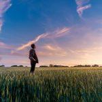 Os jovens agricultores da UE são poucos, qualificados e investem muito