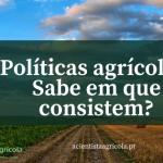 Políticas agrícolas: conceitos, apoios e programas que deve conhecer