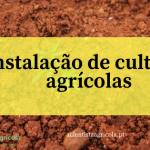 4 passos simples para aprender a instalar uma cultura agrícola