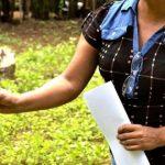 Está a ser preparado o Recenseamento Agrícola 2019. INE recruta entrevistadores