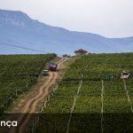 Agricultores concordam com limites na divisão de terras nas heranças