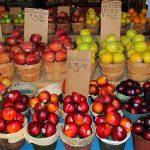 OFERTA DE EMPREGO: Trabalhadores Agrícolas (M/F) – Apanha Fruta – Oeste