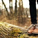 Mestre em Ciências Agrárias e/ou Engª Florestal – Estágio Profissional (m/f)