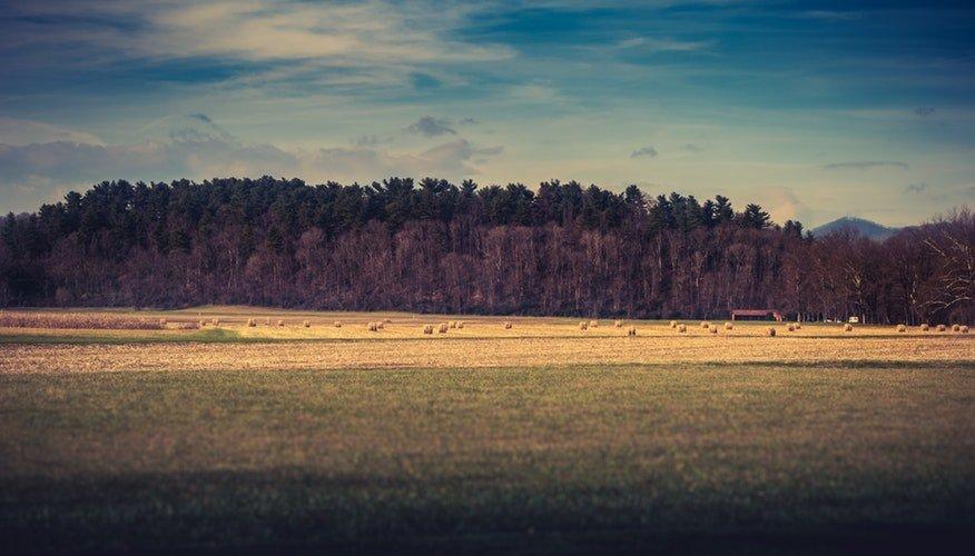 como avaliar um terreno agricola