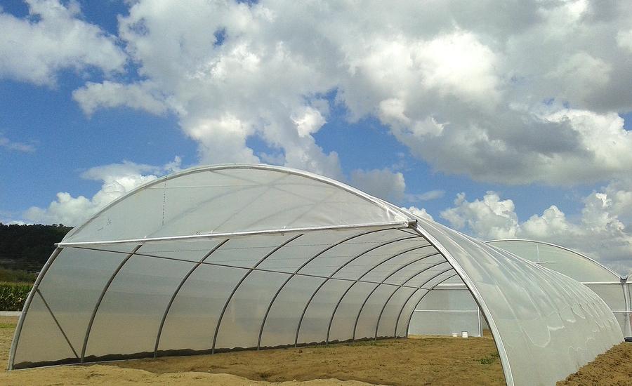 tipo de estufas agrícolas tipo túnel