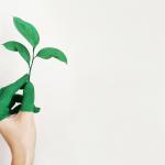 Está disposto a ser sustentável?