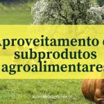 Aproveitamento de subprodutos da indústria agroalimentar para alimentação animal